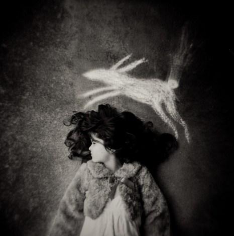 Rabbit on the Brain © Laura Burlton
