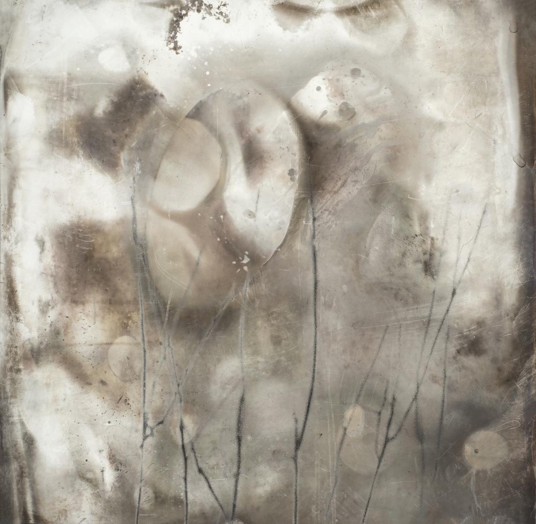 Site Sight Unseen 18 © Jane Olin
