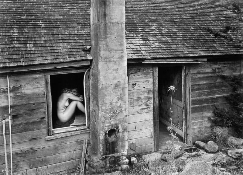 Woman and Thistle, 1953 ,Wynn Bullock ©Bullock Family Photography LLC