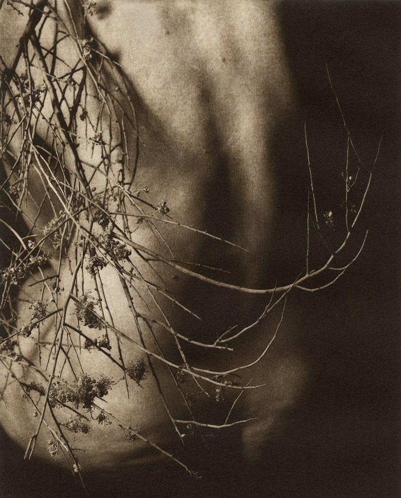 Remnants © Karen Hymer