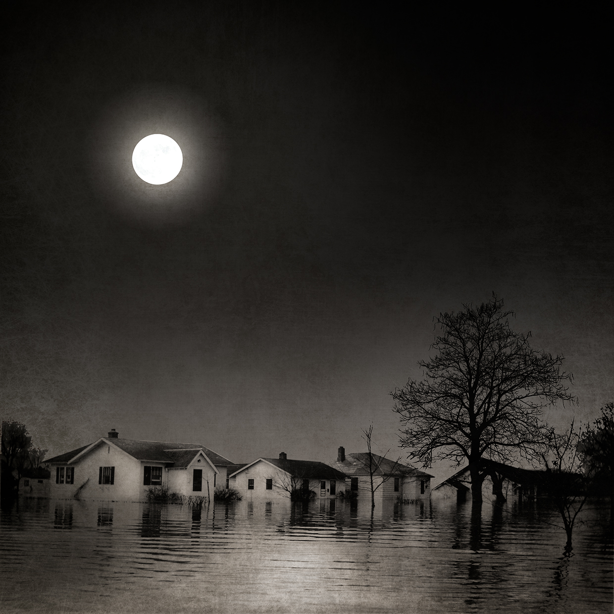 Full Moon Flood Waters © Carol Mollhagen Erb
