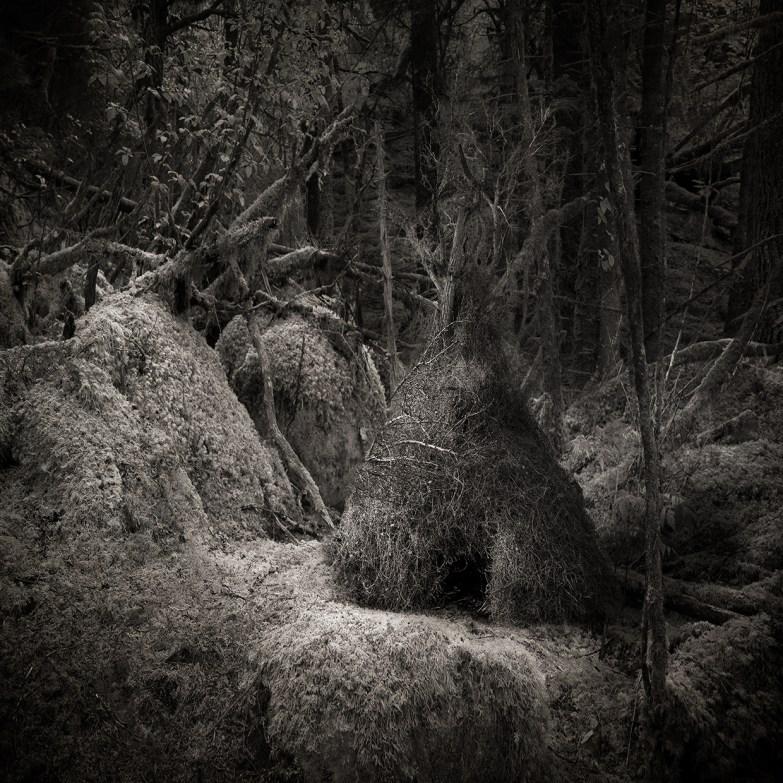 Hut © Carol Mollhagen Erb