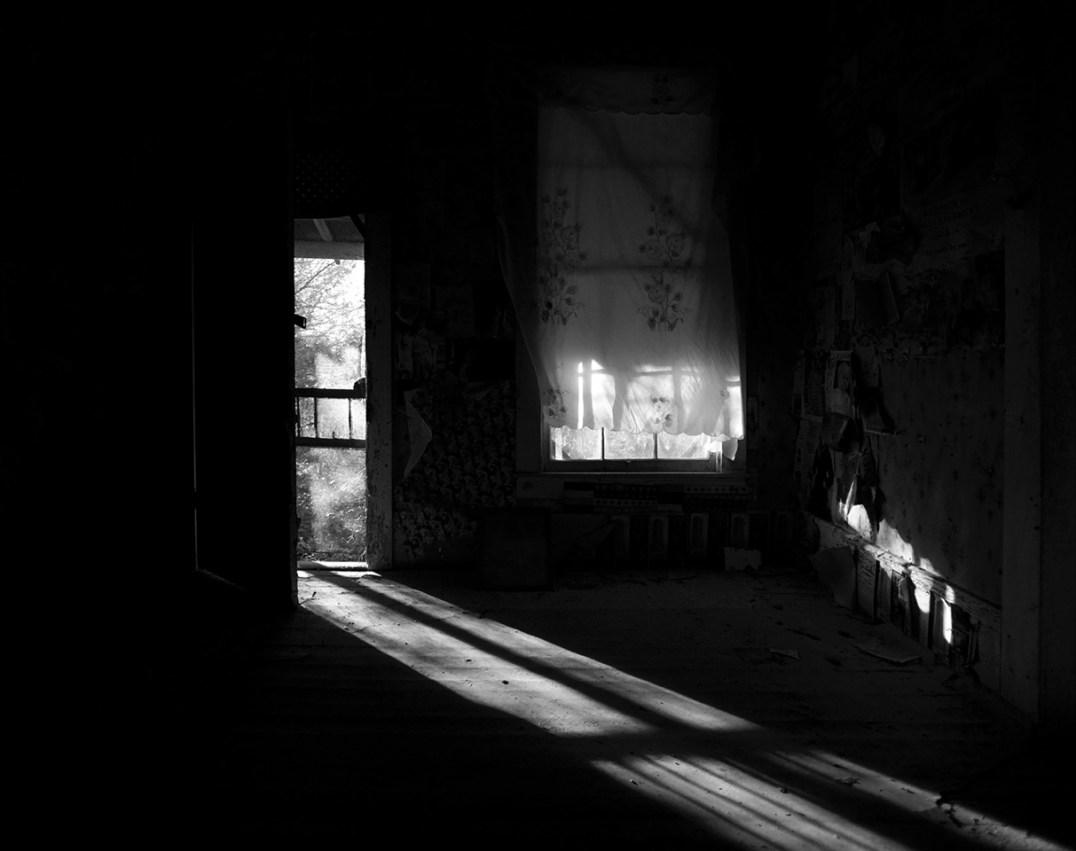 © Terri Cappucci