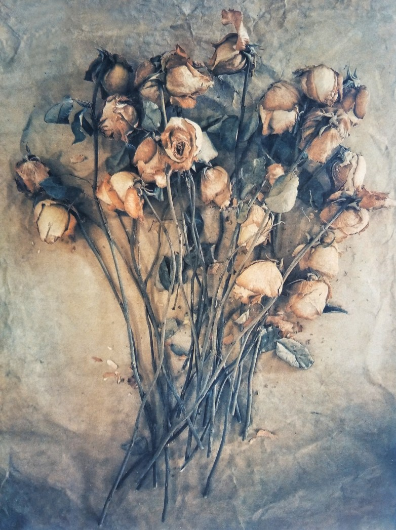 Valentine Roses © Diana Bloomfield