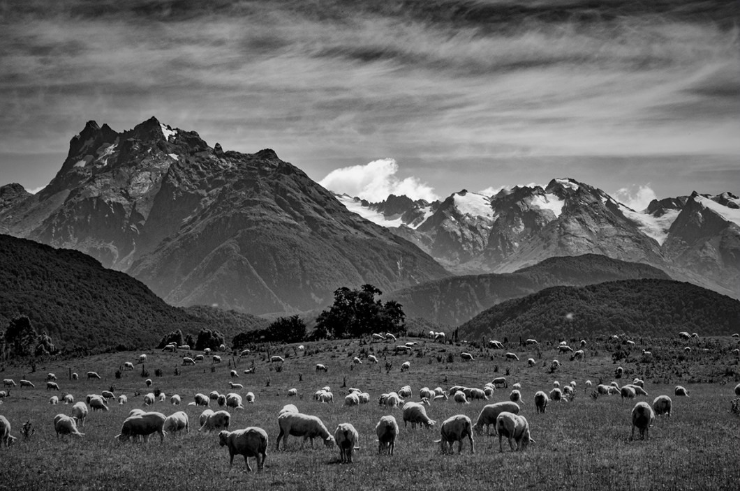 Near Glenorchy © Matt Connors