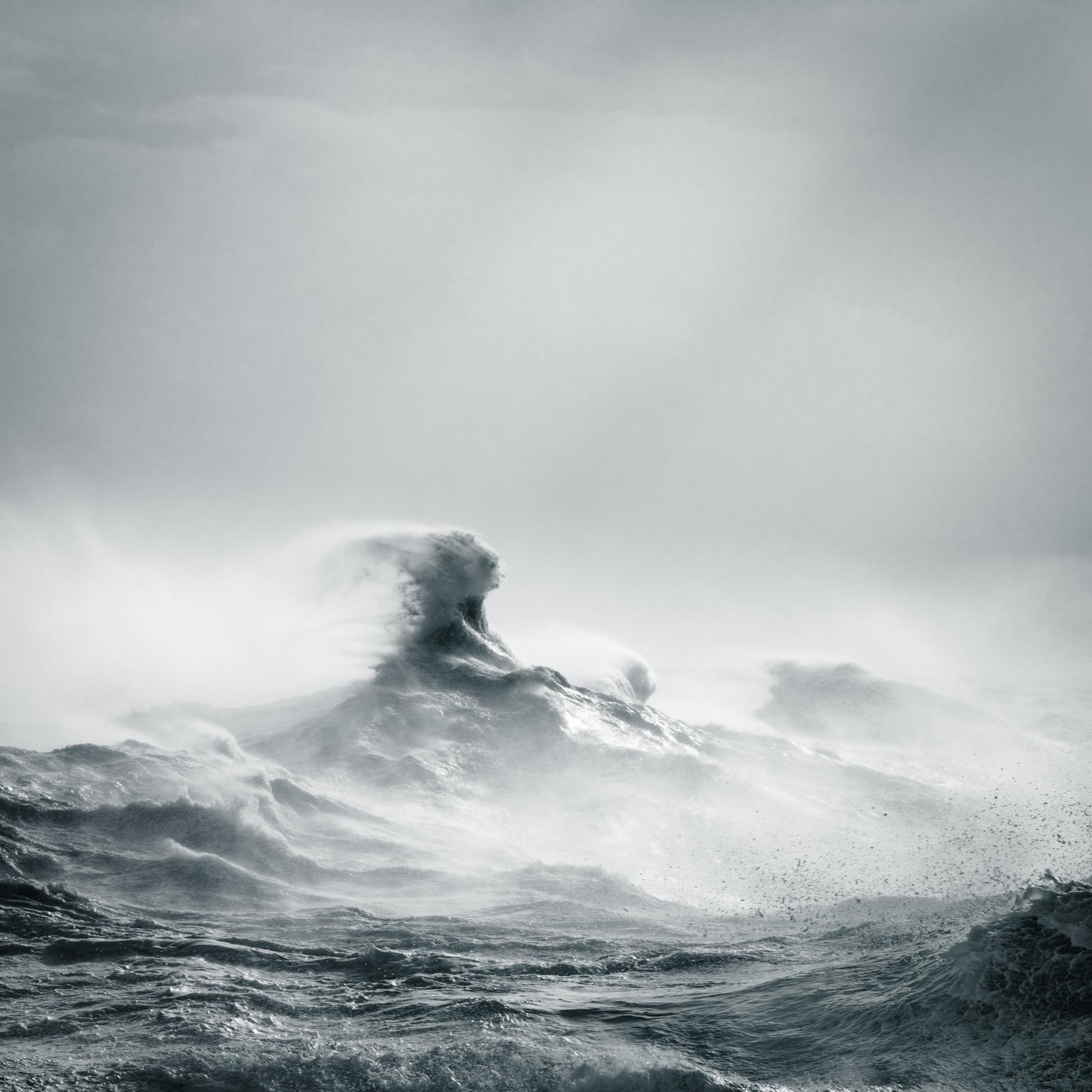 Poseidon Rising © Rachael Talibart