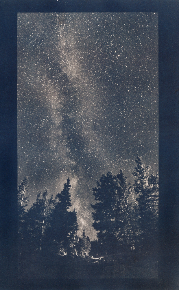 Pines and Milky Way, cyanotype © Denis Roussel