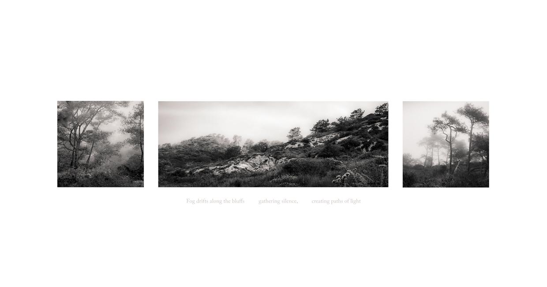 Seeing Silence 3 © Jodie Hulden