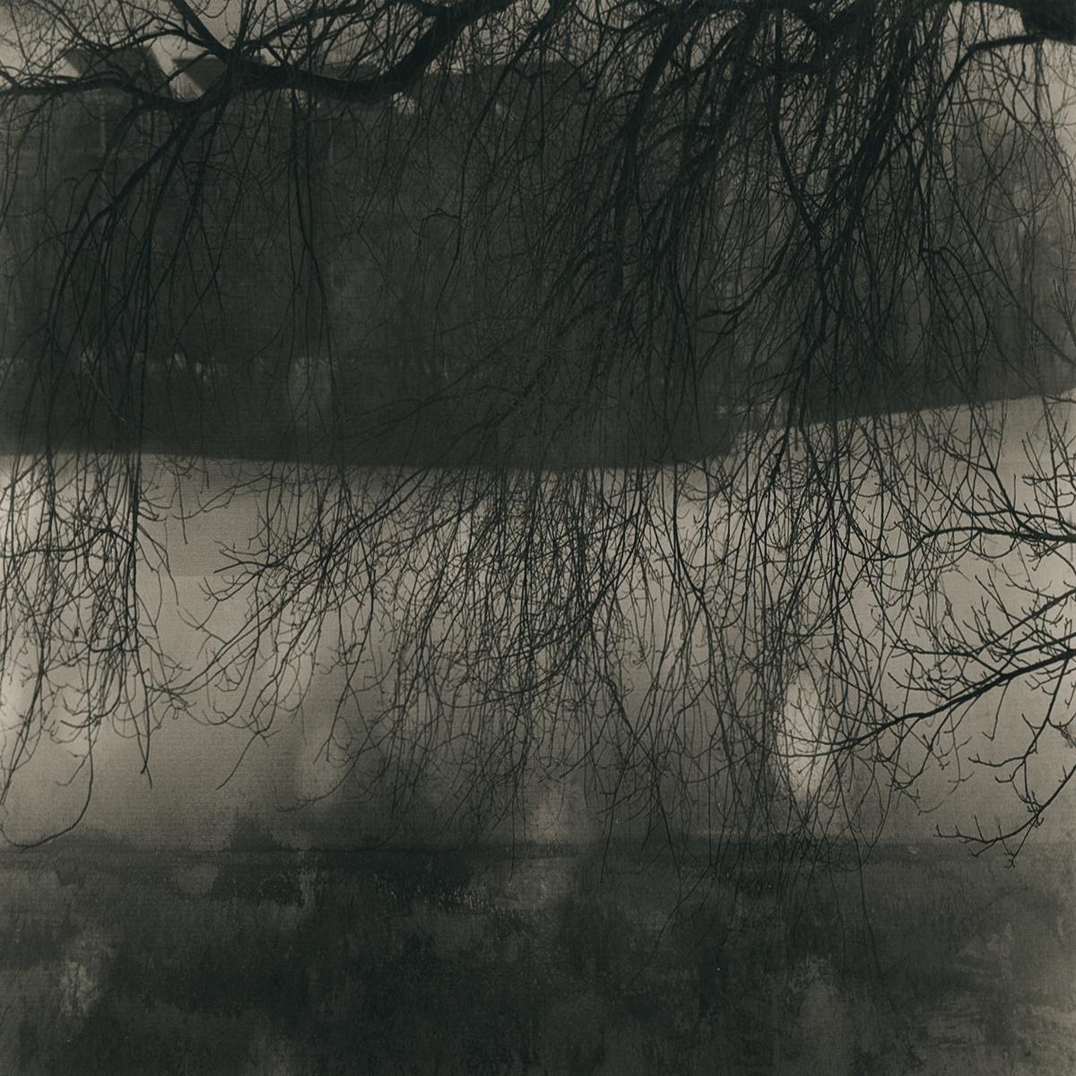 River Bottom 8 © Lee Bass