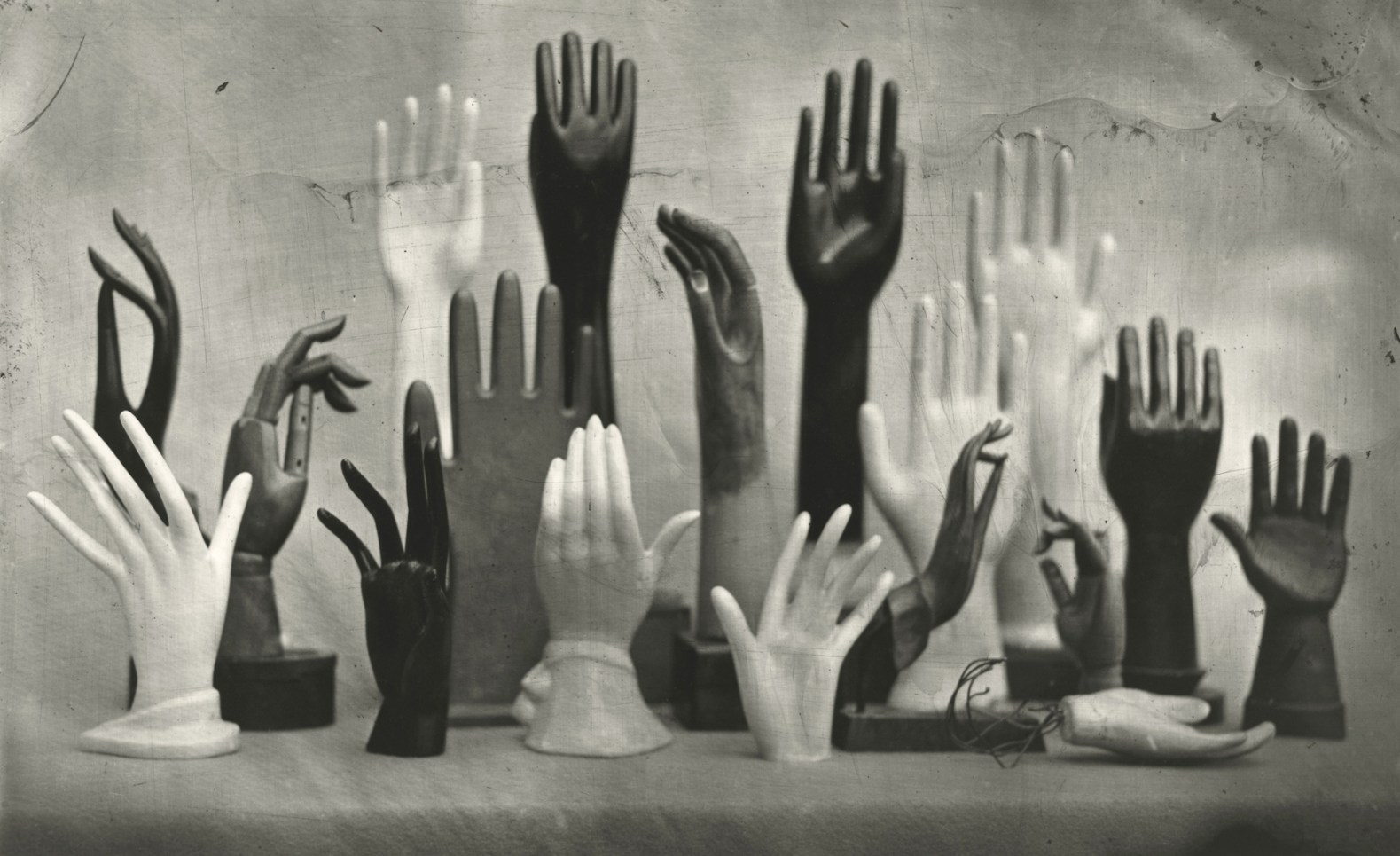 Hand Collection © Susan Bryant