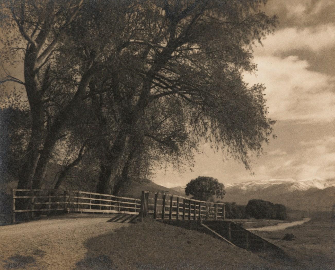 TePapa Near Earnsleugh Otago by George Chance