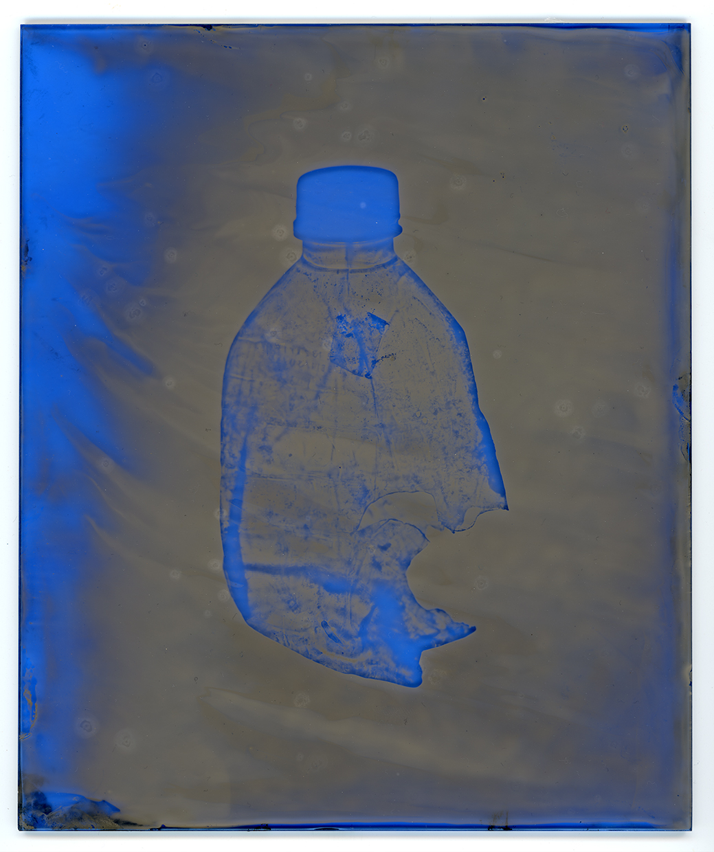 Water Bottle © Elizabeth Ellenwood