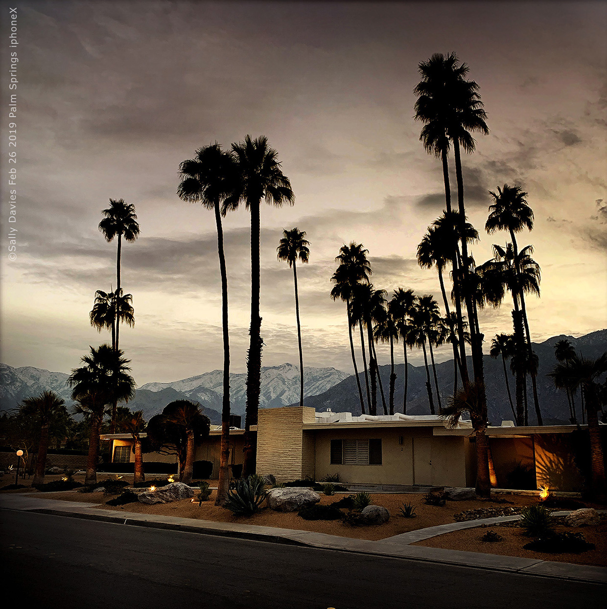 Palm Springs. South Araby Drive iphoneX, 2019 Sally Davies
