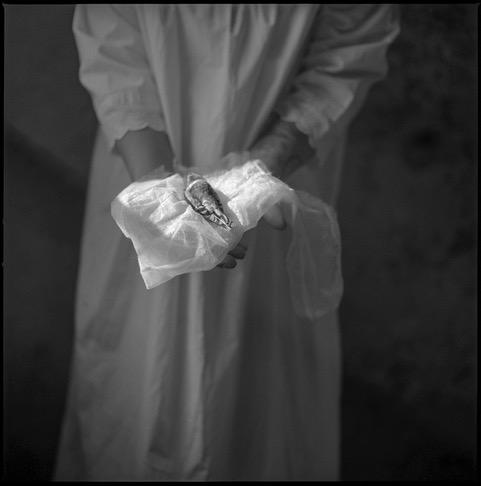 Offering © Evy Huppert