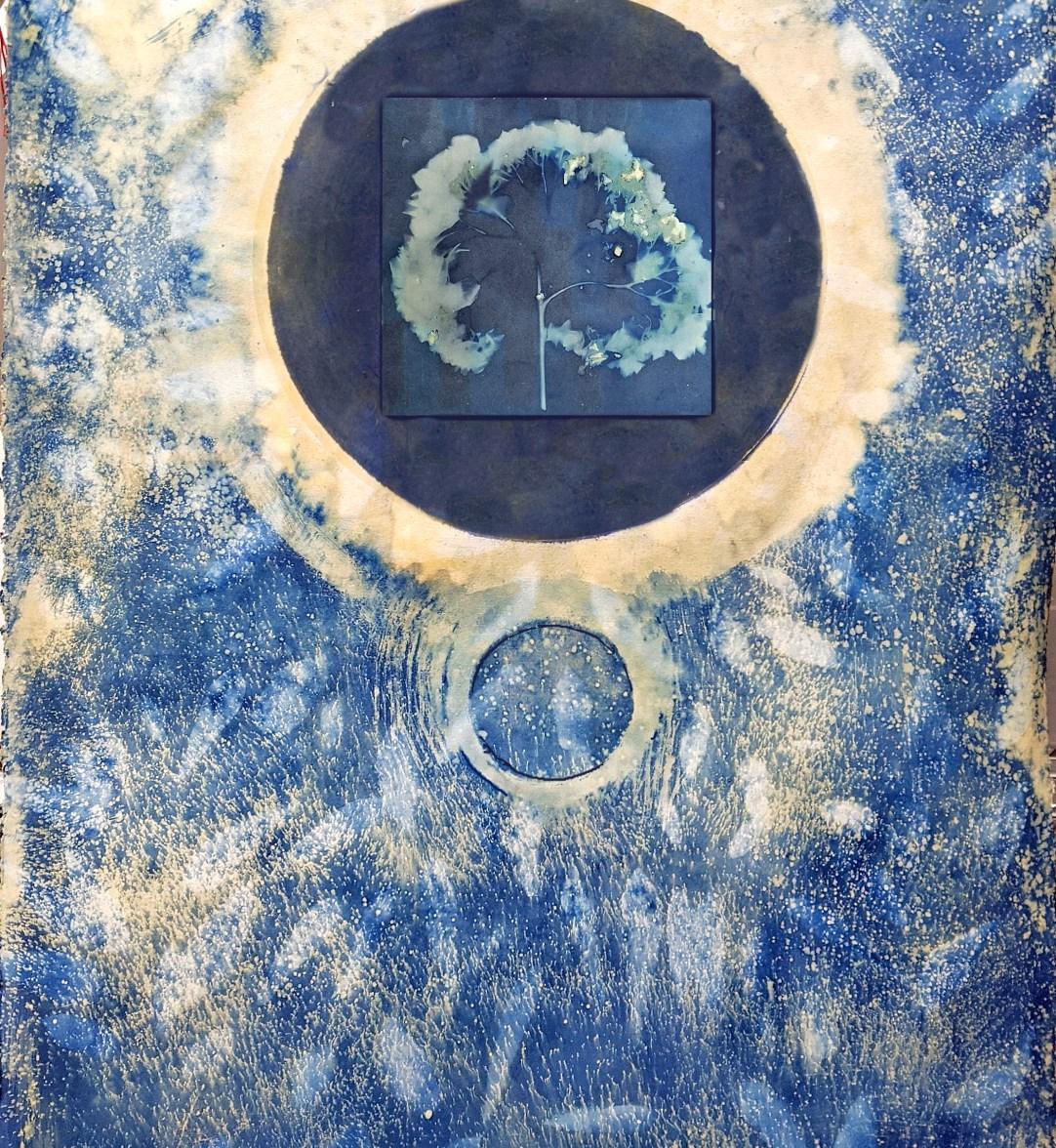 Blue Moon © Mariana Bartolomeo