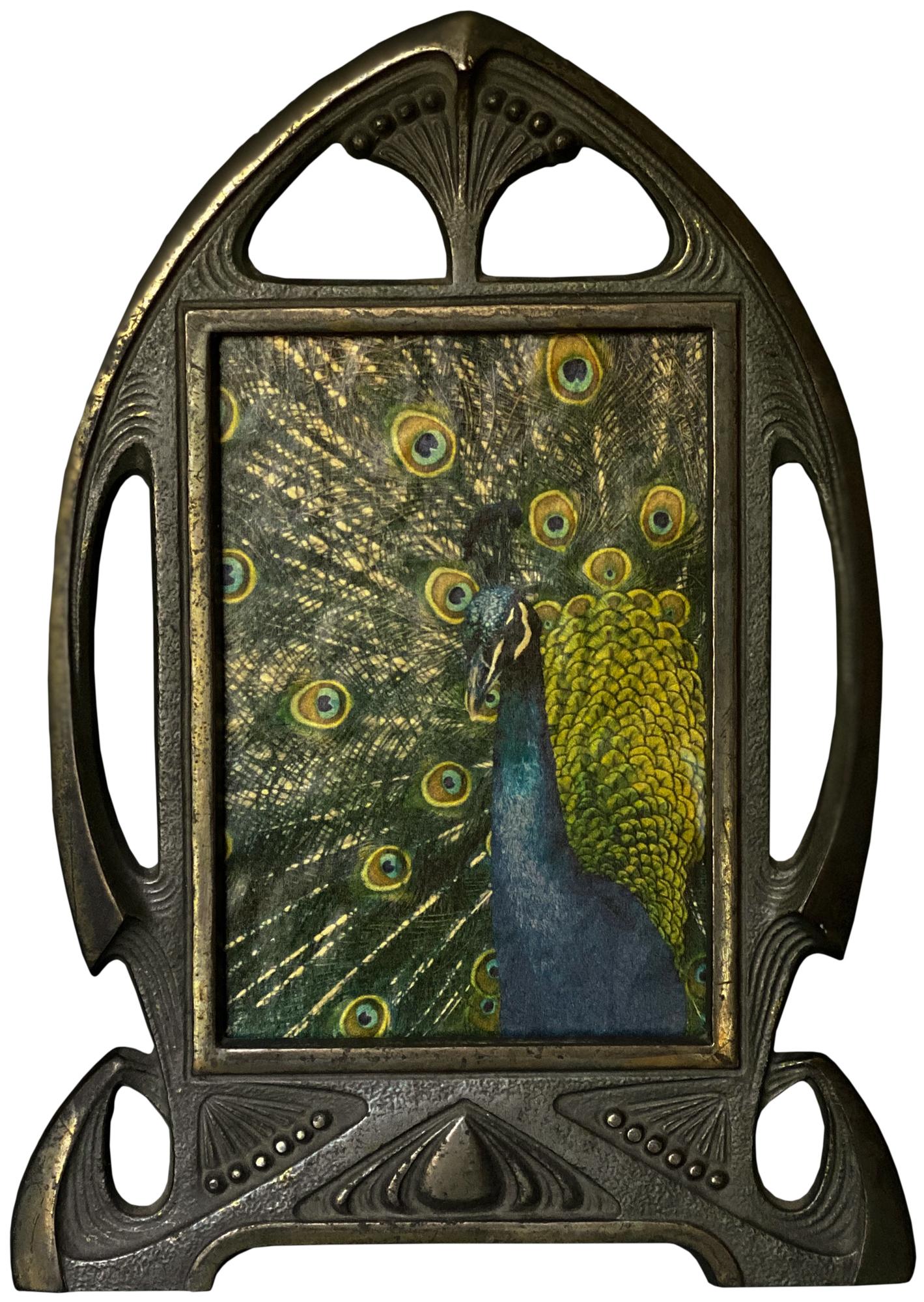 Peacock© Wendi Schneider