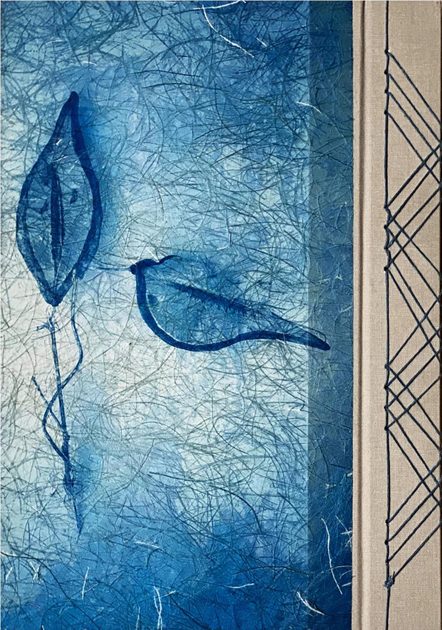 Winter Garden Cover © Diana Bloomfield