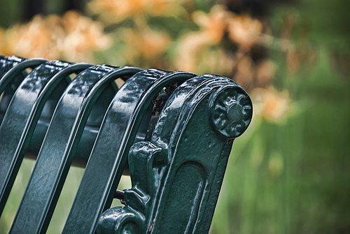 Park Bench on the Louisiana State Capital Grounds