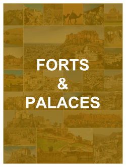 Forts & Palaces