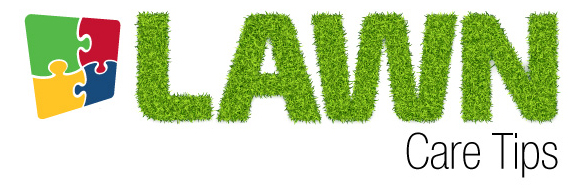 Lawn Care Tips, What is aeration?