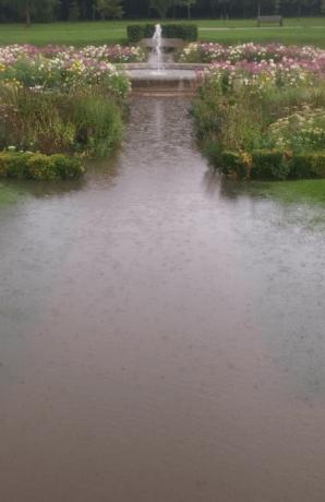 sunken garden sunk