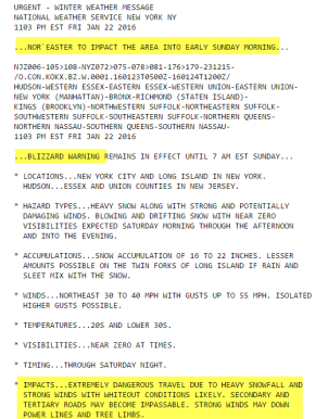 NWS blizzard warning for New York