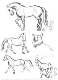 Horse and Corgi Sketch Page