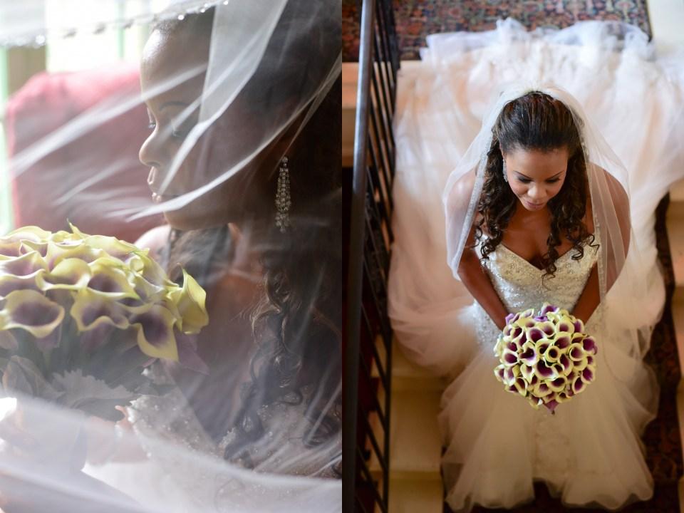 Rhea Whitney Photography