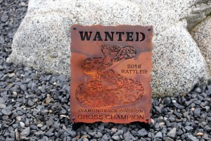 the-rattler-plaque-desert-mountain