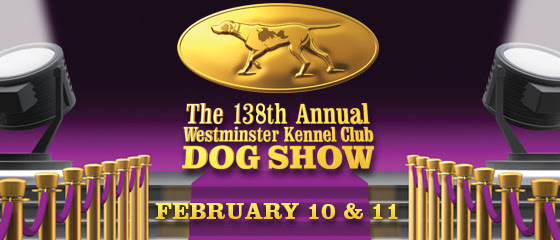 The 138th Annual Westminster Kennel Club Dog Show ...