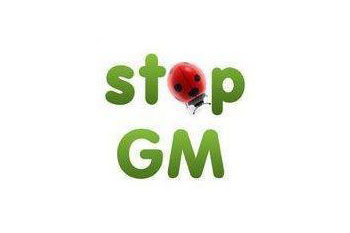 Stop GM