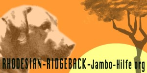 Rhodesian-Ridgeback Jambo Hilfe