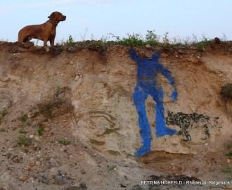 Rhodesian Ridgeback, blaue Kunst am Hang
