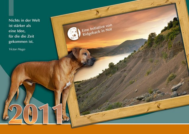 Der Ridgeback in Not Kalender 2011
