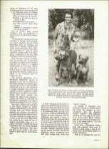 "AFRICA CALLS from Rhodesia ""Famous 'LION DOGS' of Rhodesia"""