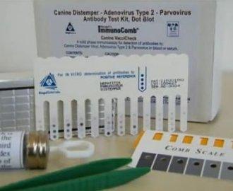 Neues zur Impfung bei Katze und Hund: Impftiter-Schnelltest