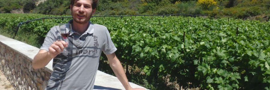 Visite du domaine « Anastasia Triantafyllou » et dégustation de vins locaux