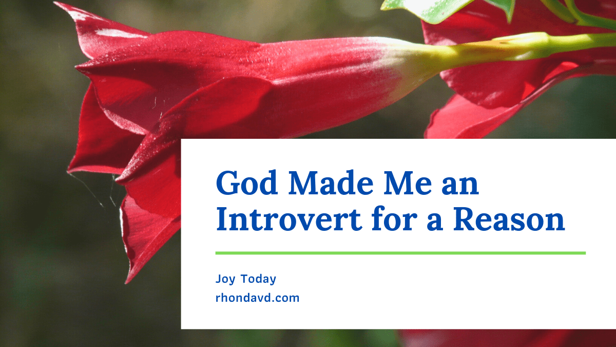 God knows what he's doing. And our part remains to accept who we are - introvert or extrovert, celebrate who others are - introvert or extrovert, and strive to live our best selves in balance and beauty with those around us.