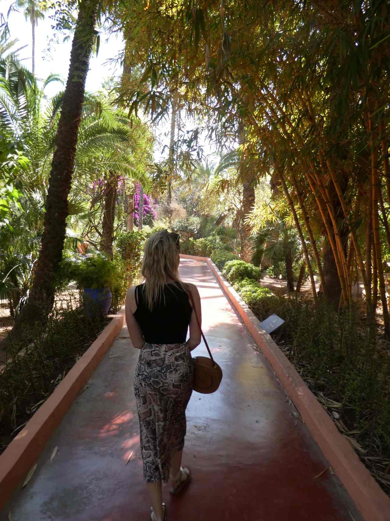 Bamboo pathway Le Jardin Majorelle