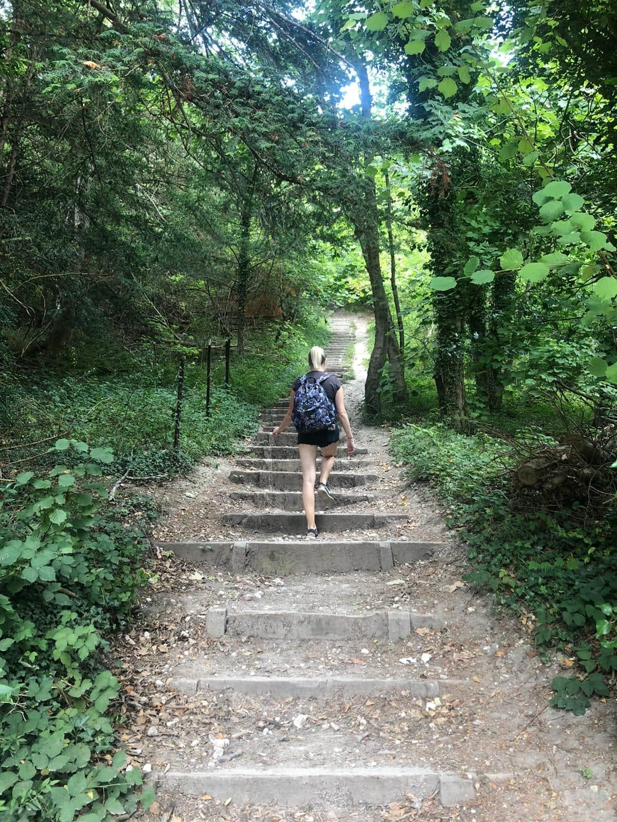 Box hill hike steps