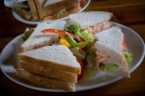 sandwichsalmon