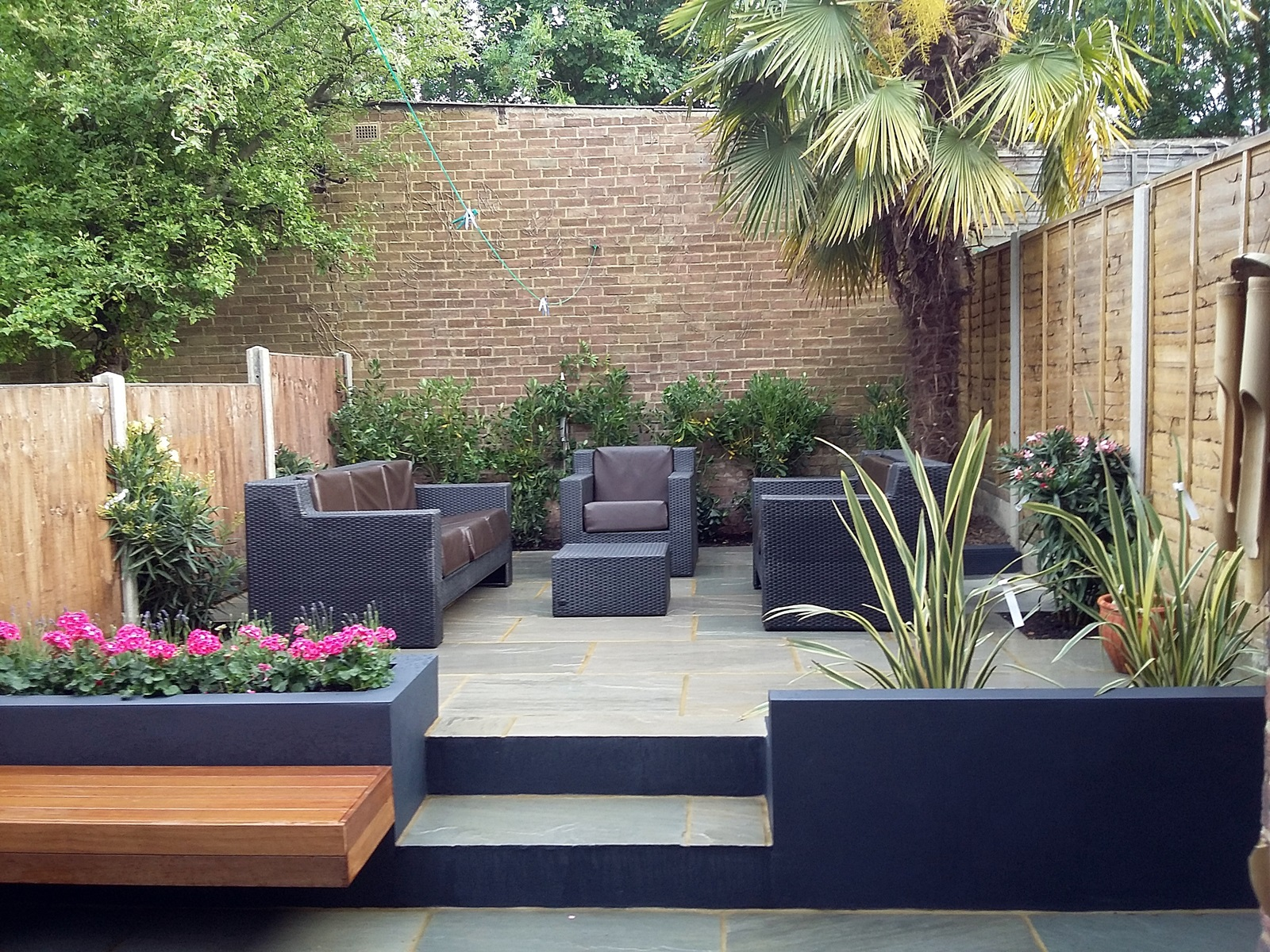 Plants For Modern Low Maintenance Garden