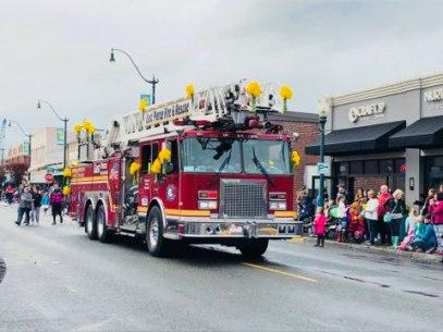 Daffodil 2018
