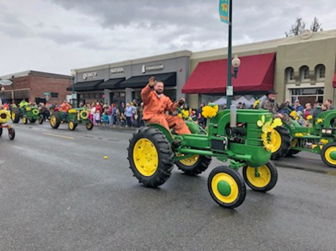 Nothing says Sumner traditions like antique tractors.
