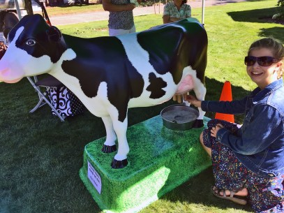 Mini-Mabel made a visit from the Washington State Fair to teach kids how to milk a cow.