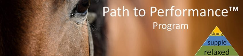 path to performance stefanie reinhold