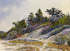 """Clinch Dunes Study #1, oil on panel, 9"""" x 12"""" - SOLD"""