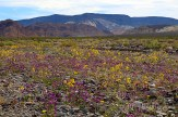 death_valley_0030w