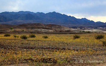 death_valley_021w
