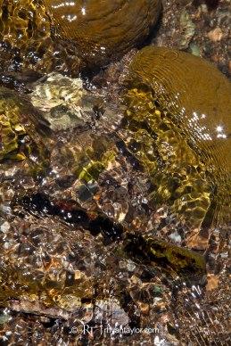 Palos Verdes Tide Pools